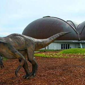 Museo Jurásico de Asturias (Colunga) 40 Km
